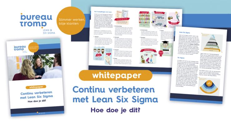 white paper lean six sigma